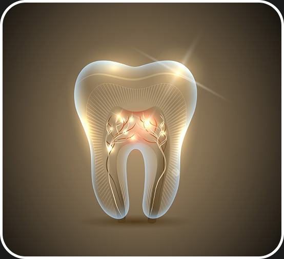 Root Canal Therapy   Canterra Dental Centre   Downtown Calgary   General and Family Dentist